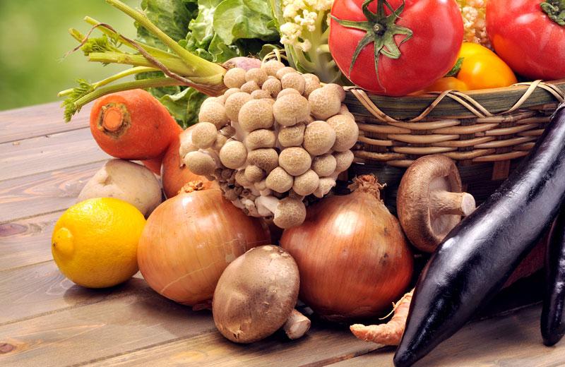バイオ健康肥料